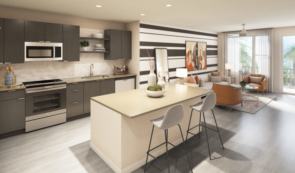 gourmet kitchen - Wrap Yourself in Elegant Luxury Apartment Features