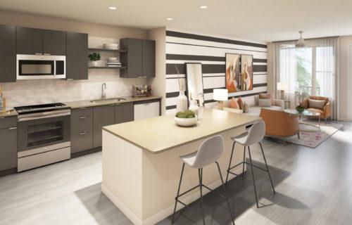 gourmet kitchen - Wrap Yourself in Elegant Luxury Apartment Features