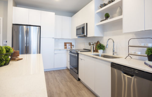 Gourmet kitchens with stainless steel appliances, chef-inspired island, bottom freezer refrigerator, and front control range - Tasty Apartment Features at Alexan WP2